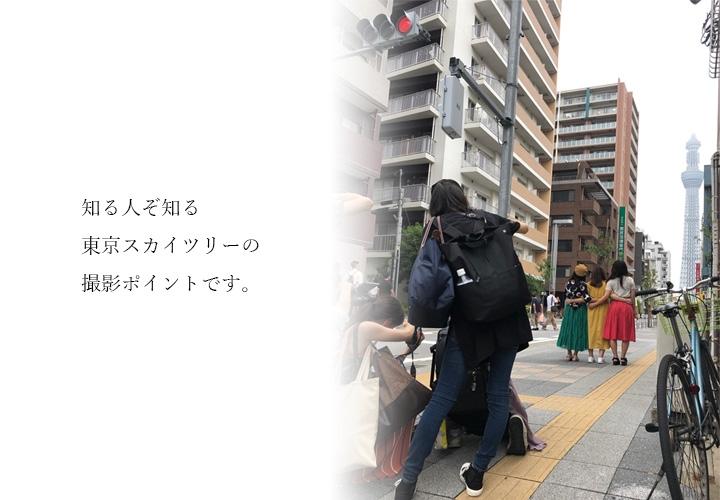 知る人ぞ知る東京スカイツリーの撮影ポイントです。